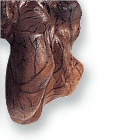 walnut_amber